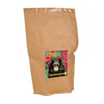 """Kávé, pörkölt, szemes, 1000 g, CAFE FREI """"Trópusi KOFFEINMENTES"""""""