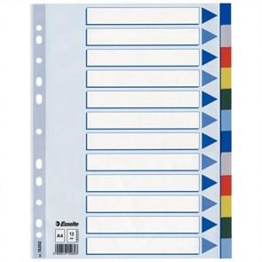 Regiszter, műanyag, A4, 20 részes, ESSELTE