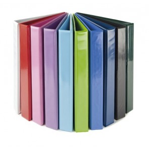Gyűrűs könyv, panorámás, 4 gyűrű, 40 mm, A4, PP/karton, PANTA PLAST, rózsaszín