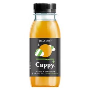 """Gyümölcslé, 100%, 0,25l, CAPPY """"Cappy Plus"""", narancs"""