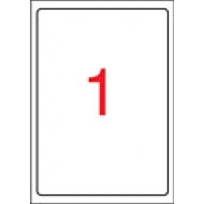 Etikett, tintasugaras nyomtatóhoz, 199,6 x 289,1 mm, fényes, fotóminőségű, APLI, 10 etikett/csomag